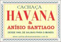 Cachaça Havana e Anísio Santiago